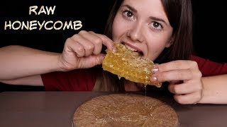 ASMR Zuckerschock ❌ Sticky RAW Honeycomb Eating Sounds [deutsch/german]