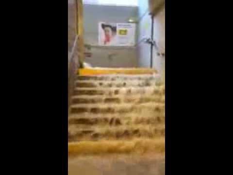 inondation ikea a montpellier typiak youtube. Black Bedroom Furniture Sets. Home Design Ideas