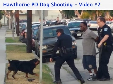 Good Cop v. Bad Cop #1 - Hawthorne PD Dog Shooting Video #2 - Analysis with audio and new angle