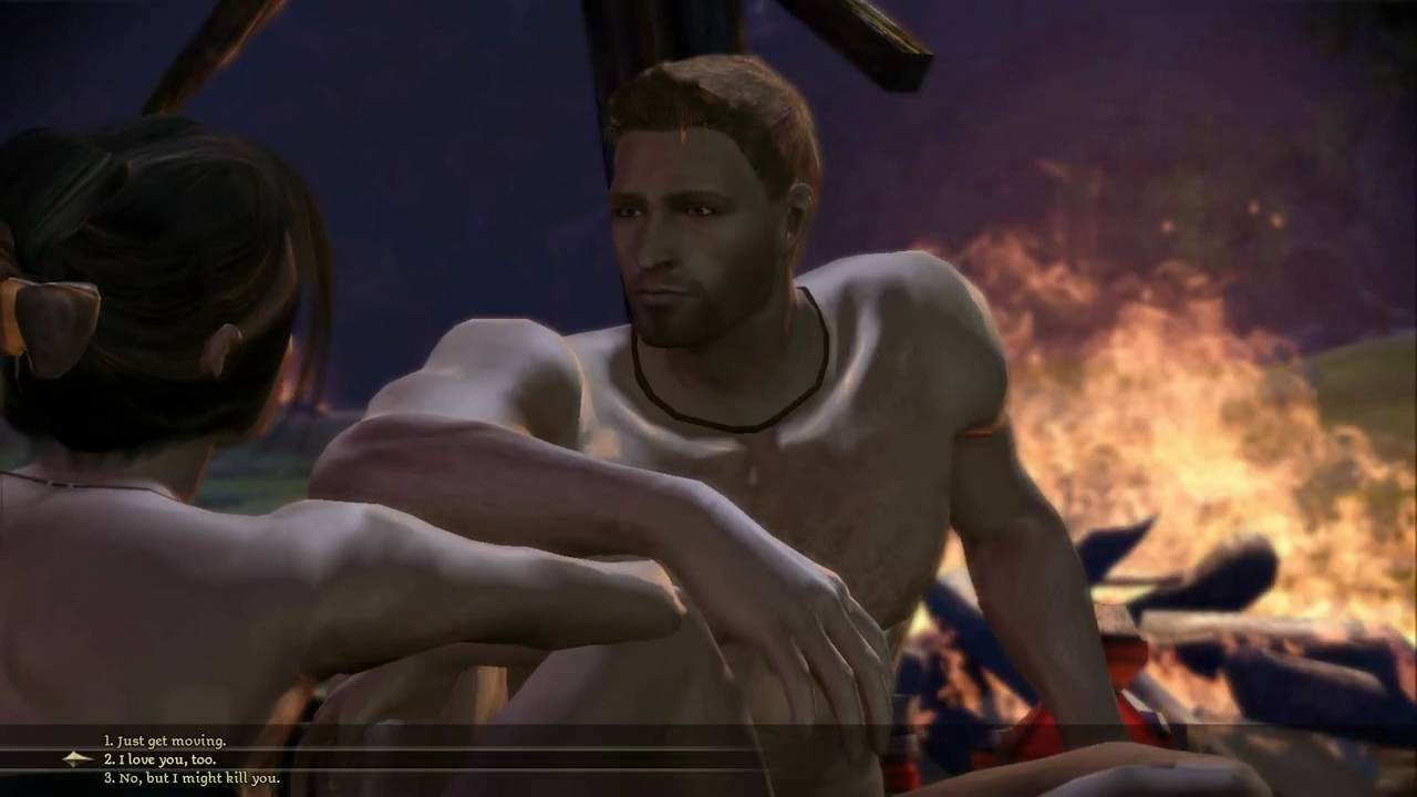 dragon age origins gay scene