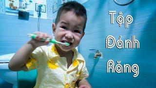 Bé tập Đánh răng   Subin tập chải răng và rửa mặt ❤ BonBon TV ❤