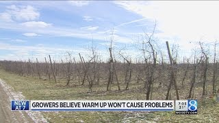 Technology curbs W. MI crop concerns amid unusual weather