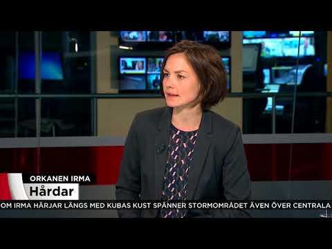 """Rolf Porseryd: """"Därför väljer vissa att stanna kvar under orkanen"""" - Nyheterna (TV4)"""