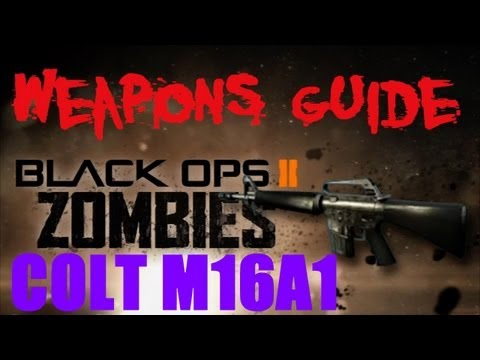 BO2 Zombies Colt M16A1 / Skullcrusher Weapons Guide