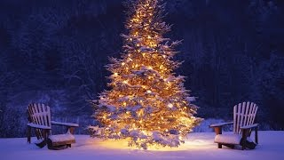 [MC] Best Christmas Songs of All Time   Top 21 Popular Christmas Music Playlist 2016 - 2017