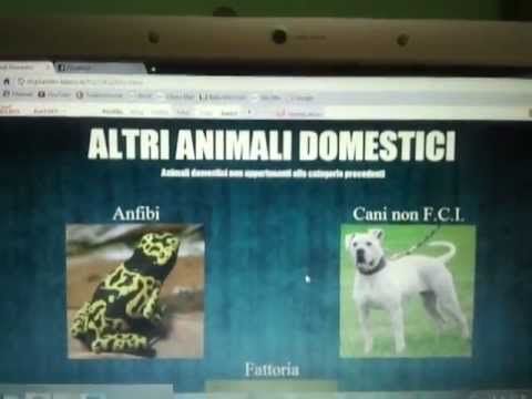 ANIMALI DOMESTICI – Il Sito (digilander.libero.it/fra2283)