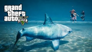 GTA 5 PS4 - Jogando como Arraia e Tubarão (Play as a Ray & Shark - GTA 5 Peyote plant locations)