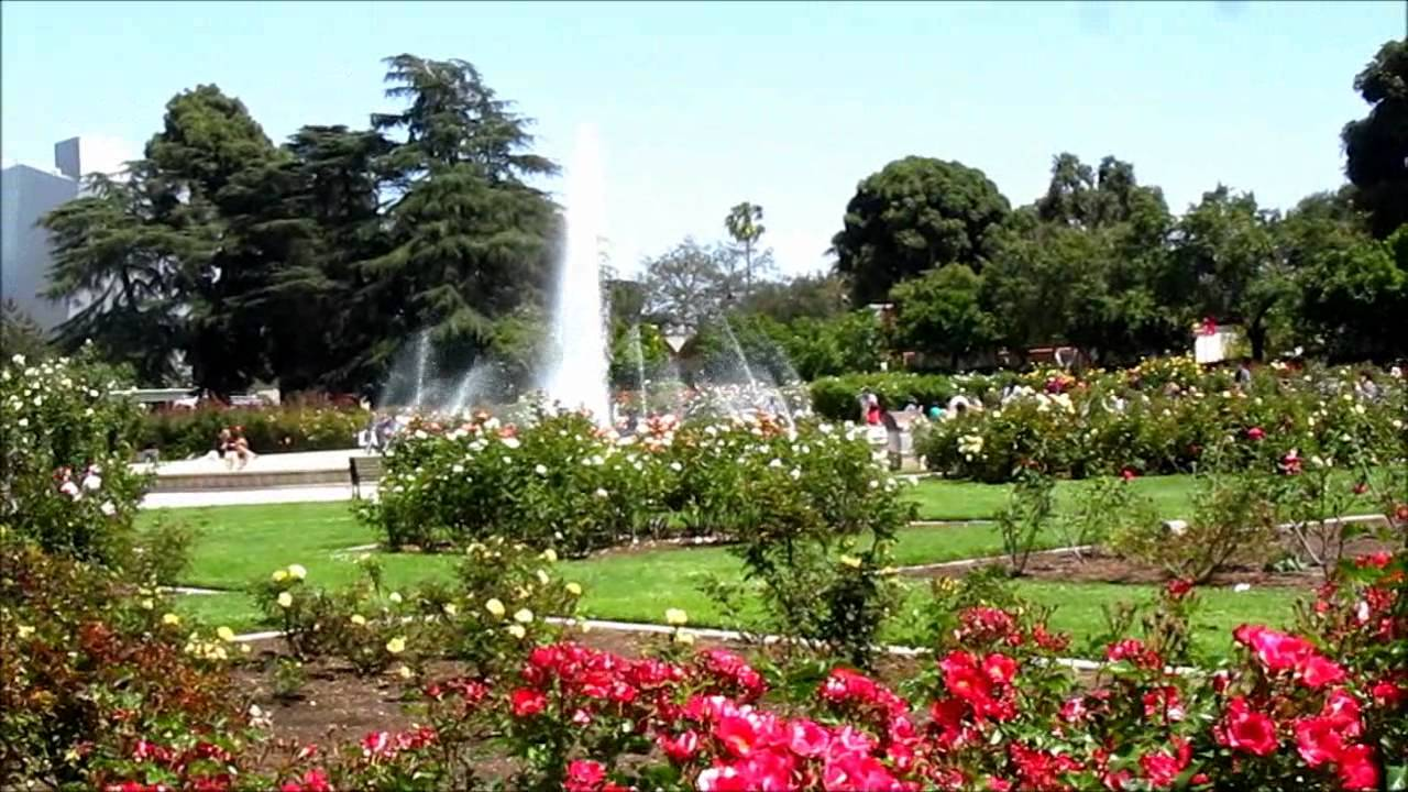 may 26 2012 rose garden exposition park los angeles youtube. Black Bedroom Furniture Sets. Home Design Ideas