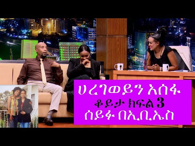 Seifu on EBS: interview With Artist Haregewein Assefa Part 3