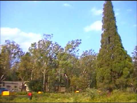 Beauty of Chikhaldara  with Dr V T Ingole,Hirulkar with Damahe video by Shirishkumar Patil  Amravati