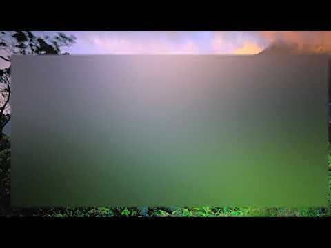 Hall & Oates - Have I Been Away Too Long