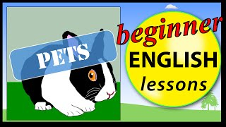 Pet animals in English, Beginner English Lessons for Children