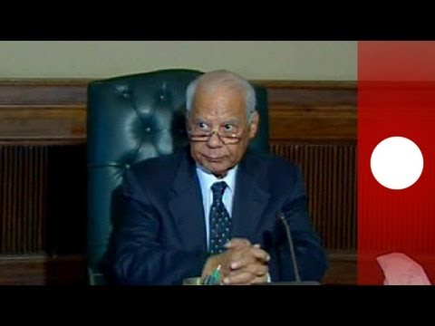 Work begins on revising Egypt's constitution