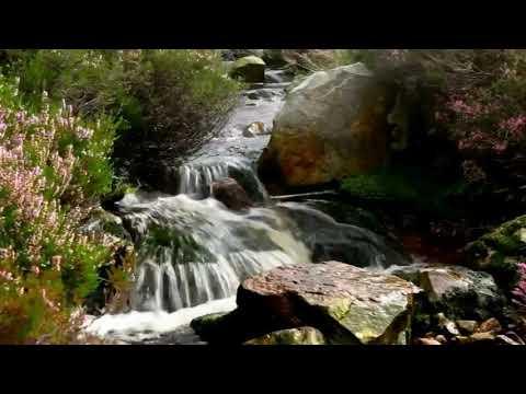 Медитация  Целебное расслабление