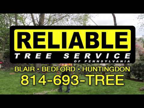 Reliable Tree Service - Serving Blair, Bedford, and Huntingdon Counties