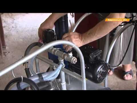 На Херсонщине крестьяне открывают молочные мини-фермы