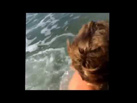 Nadando salgadas das inimigas