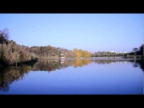 Видео как снимает Canon 550D