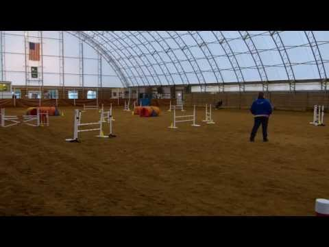 Booster's Level 5 Jumpers run, ACTS CPE Agility Trial, Lindstrom, MN, 10/6/13