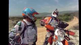 Croatia Rally 2015: Il Tormentone Del Cavallo