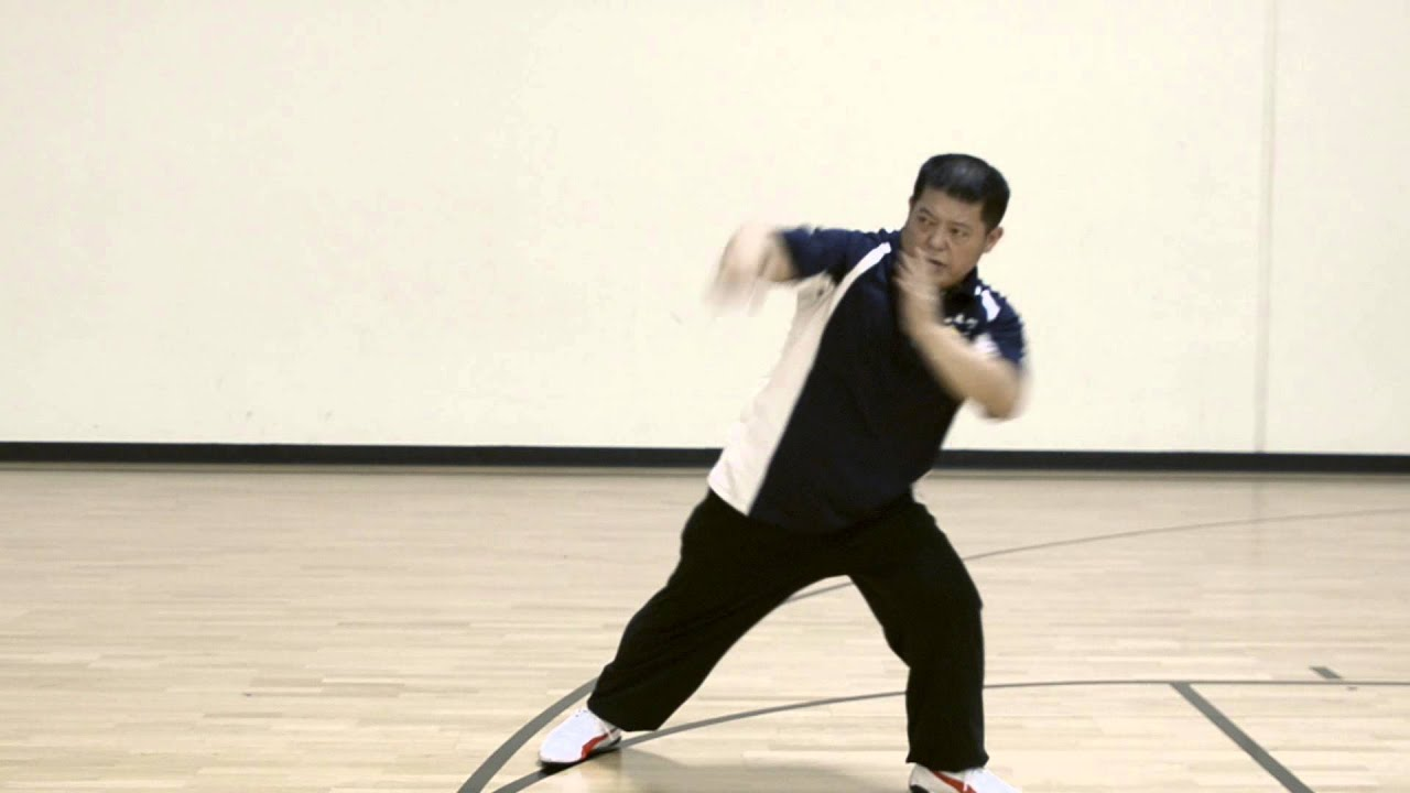 Southern Dragon Kung Fu  Wikipedia