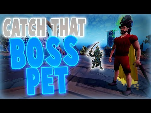 Runescape 2017 | Road to all Runescape Boss Pets! | PET DROP!? | #4