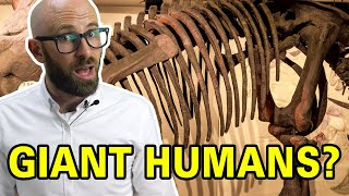What Did People Think When They First Found Dinosaur Bones?