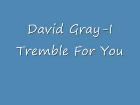 Gray, David - I Tremble For You