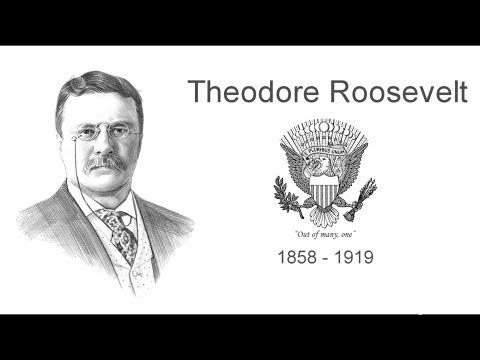Theodore Roosevelt ***
