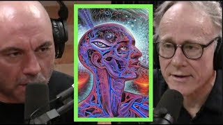 Joe Rogan | Ayahuasca is Amazonian Science w/Graham Hancock