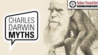 The Many Myths Surrounding Charles Darwin