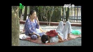 Chuyện lạ: Khu vườn có khả năng chữa bệnh tại Long An?