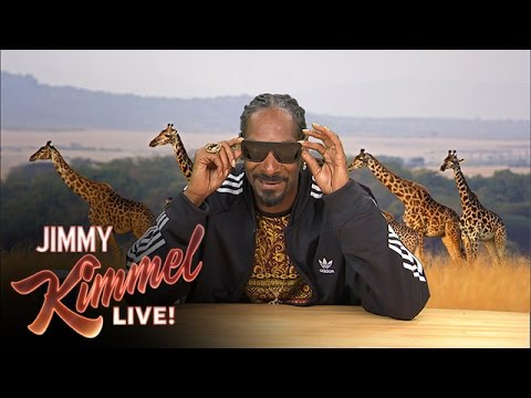 Plizzanet Earth with Snoop Dogg - Snow Leopard