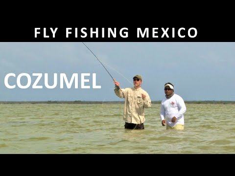 Cozumel Mexico - Bonefish - Fishing with Ladin