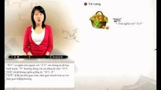 [Sơ Cấp] Tiếng Hàn - Bài 14: Đau cổ và đau đầu