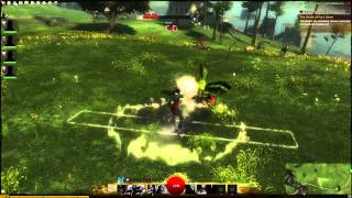 Guild Wars 2: No Healer