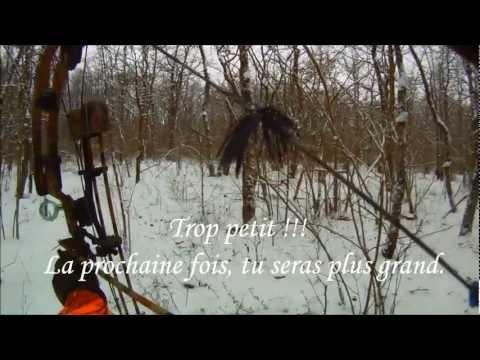 Battue Sanglier à L'arc Sous La Neige - video chasse au sanglier