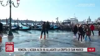 Inondazione record a Venezia: raggiunti i 187 centimetri - Storie italiane 14/11/2019