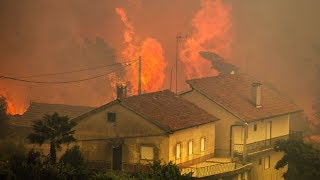 """Raging forest fire kills 61 in Portugal, many in their cars as they fled – """"The dimensions of this fire have caused a human tragedy beyond any in our memory"""""""