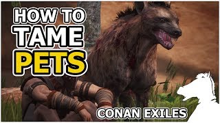 How to tame PETS | CONAN EXILES