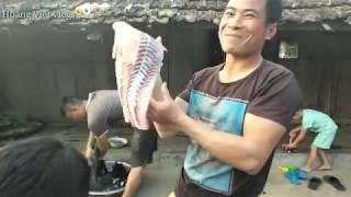 Gỏi Cá Trắm Khủng Tây Bắc/Hoàng Việt Vlogs