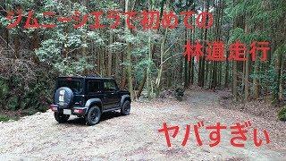 ジムニーシエラで初めての林道を走ってみた車載動画