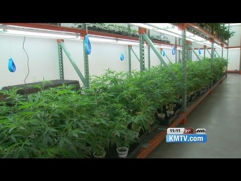 Can Minnesota's medical marijuana law work in Nebraska?