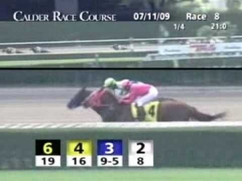 Not For Silver - 1st Carry Back Stakes G2 at CRC