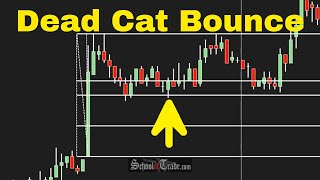 Day Trading The NEWS with a Dead Cat Bounce Pattern; SchoolOfTrade.com