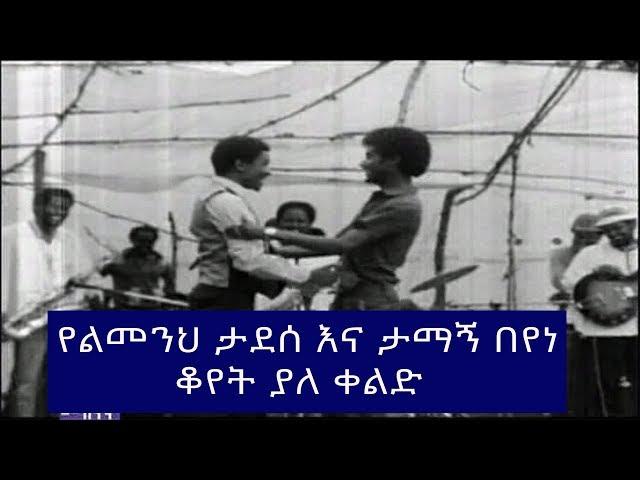 Limenih Tadesse and Tamagn Beyene
