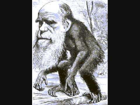 Pater Moeskroen - Darwin Kan Tevreden Zijn