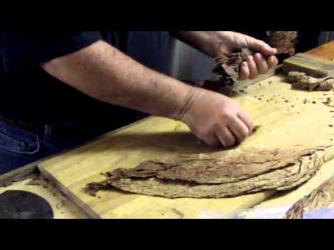 rolling cigars with my new nigaraguan filler tobacco.avi