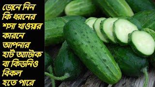 আপনি কি রেগুলার শসা খান ? বুঝেশুনে খাবেন, নইলে ঘটতে পারে ভয়ঙ্কর বিপদ।। Ruposhi Bangla Tv ।।