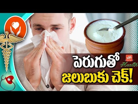 Top 10 Benefits of Eating Curd for Cold | Health Tips in Telugu | YOYO TV Health